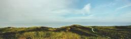 PTSGroup_S4HANA_Von-der-grünen-Wiese-zu-den-Wolken_kl