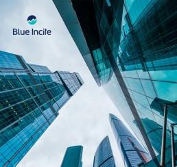blueincite-adobe-campaign-affinis